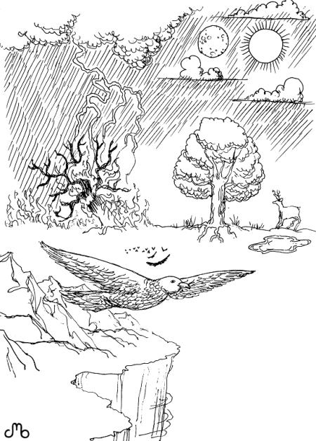 Bird & Lightning