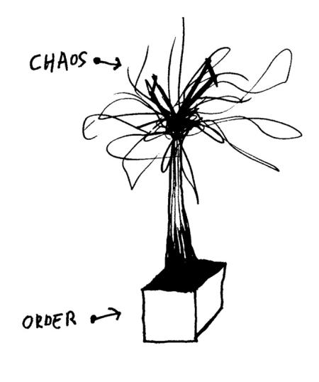 Chaos Order