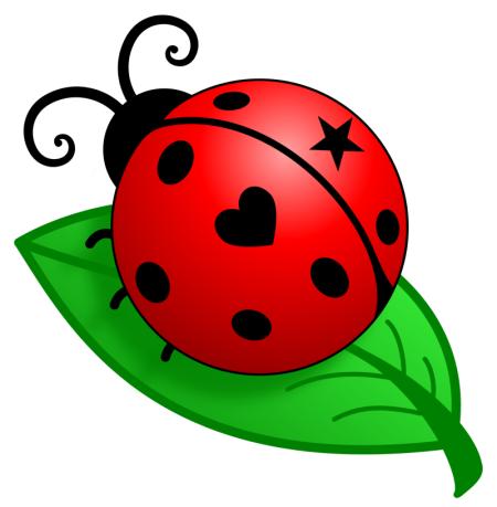 Ladybug Events